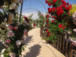 Tu lugar de bodas en madrid